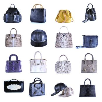 Set skin animals texture bag luxury item close up on white.
