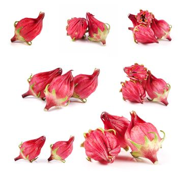 roselle isolated on white background