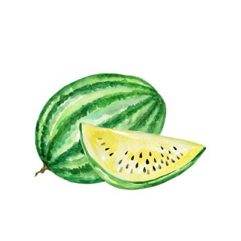 Watercolor Fruit Yellow Watermelon. Hand Drawn Illustration Organic Food Vegetarian Ingredient