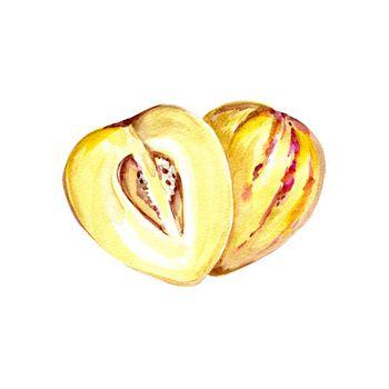 Watercolor Solanum Muricatum. Pepino Dulce. Hand Drawn Illustration Organic Food Vegetarian Ingredient