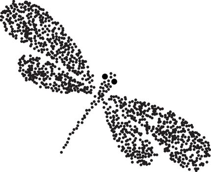 Vector dragon-fly silhouette. Cartoon graphic illustration of damselfly isolated with black and white wings. Sketch insect dragonfly