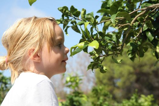 Portrait of cute baby girl watching leafage