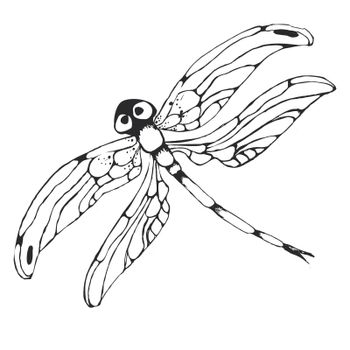 Dragonflie. Hand drawn graphic illustration in black and white
