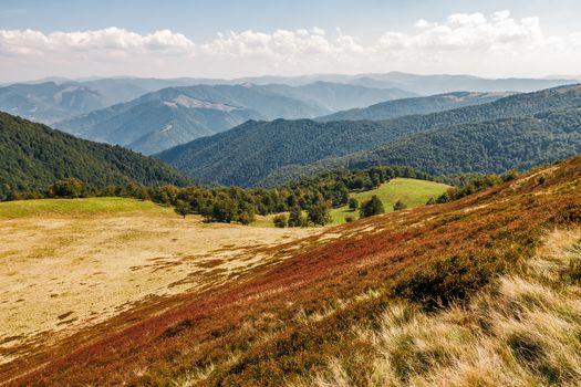 reddish weathered grassy carpet of hillside
