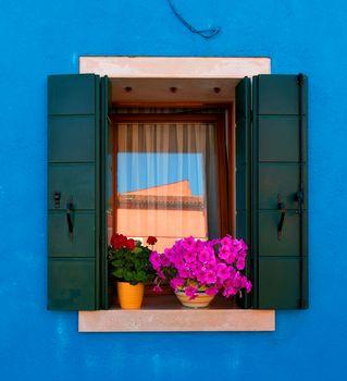 Window with flowers