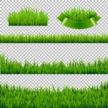 Green Grass Borders Isolated