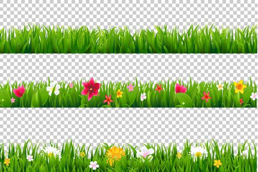 Summer Flower Border, Isolated on Transparent Background, With Gradient Mesh, Vector Illustration