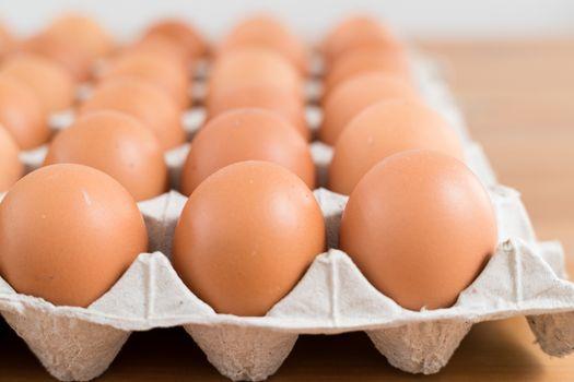 Egg in pack