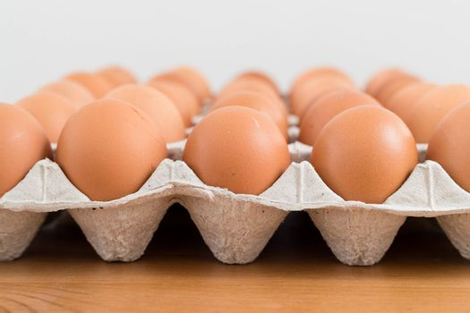Fresh chicken egg in package
