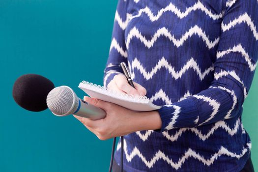 Female reporter taking notes at news conference