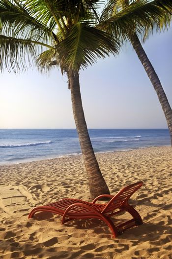 Wooden chaise longue under the palm tree on the ocean, Kenya