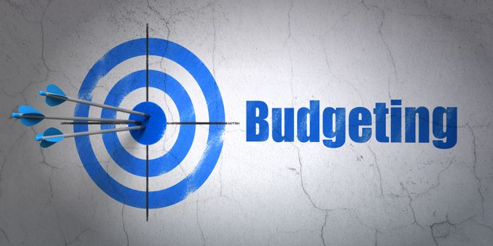 Finance concept: target and Budgeting on wall background