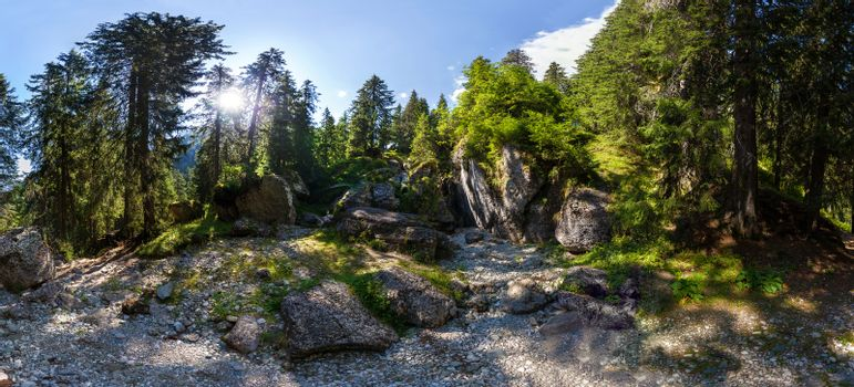 Panoramic view of a forest from Mount Bucegi on summer, part of the Carpathian Range from Romania