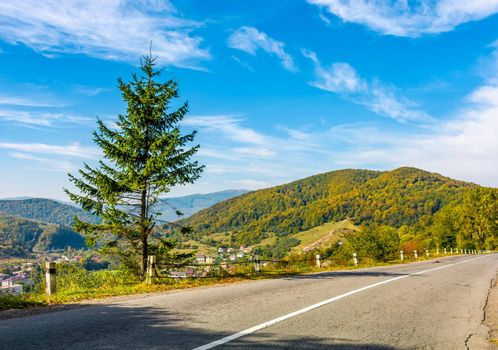 countryside road through the forest in mountains. lovely Carpathian countryside landscape in early autumn morning