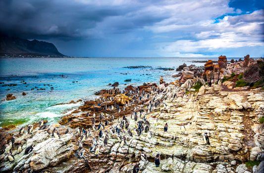 Amazing landscape of Betty's Bay