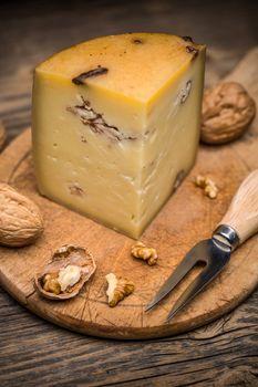 Piece of artisan cheese