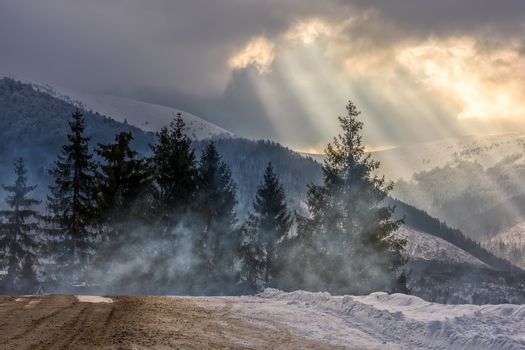 stormy weather over forest in mountains