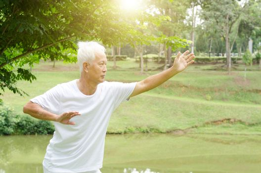 Portrait of healthy white hair Asian senior man practicing martial arts at outdoor park in morning.