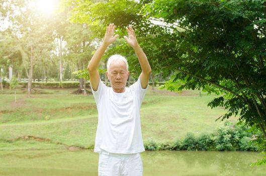 Portrait of healthy grey hair Asian senior man practicing tai chi at outdoor park in morning.