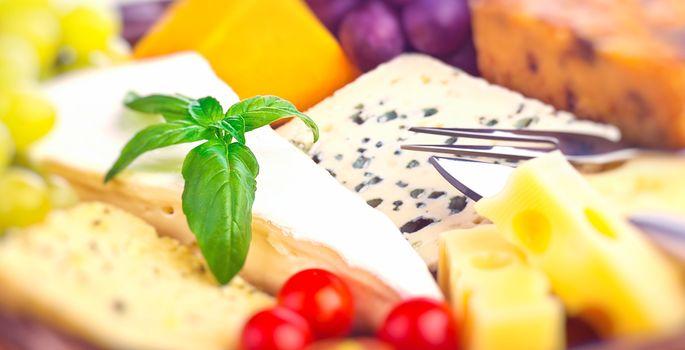 Tasty cheese background
