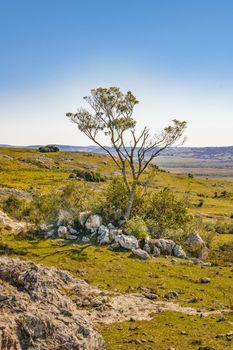 Rocky countryside landscape environment located in Maldonado city outskirts, Uruguay