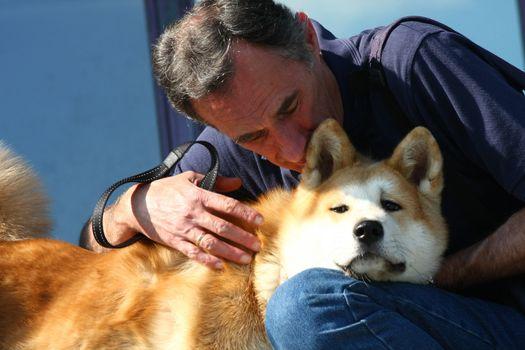 Cute Akita dog enjoys hugging with a man