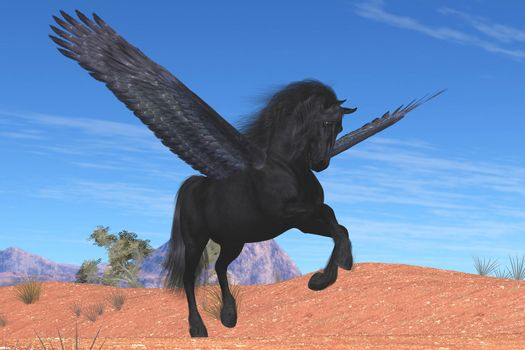 A mythical Pegasus with a beautiful black satin coat rises into the sky on powerful wing beats.