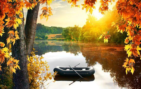 Boat in the pond