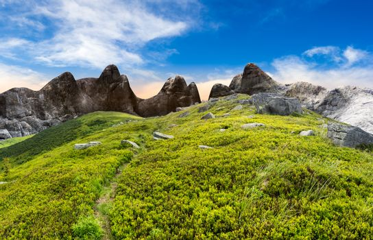 path through boulders on hillside