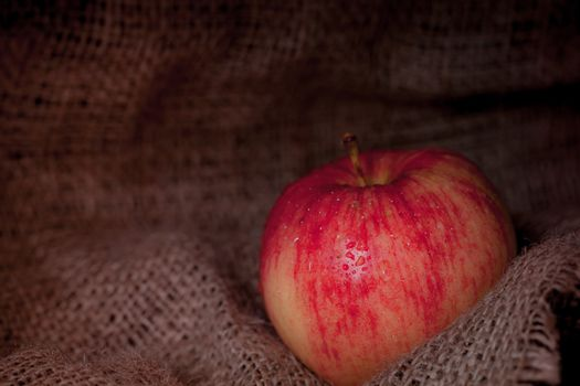Red and yellow apple on old canvas background