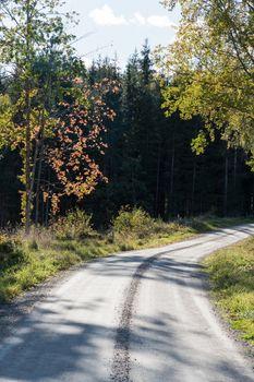 Gravel road in fall colors
