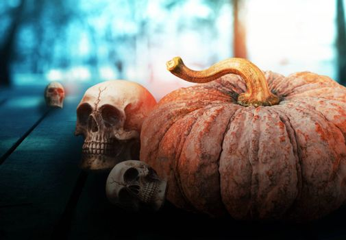 Pumpkin and skull on wooden with wild background.