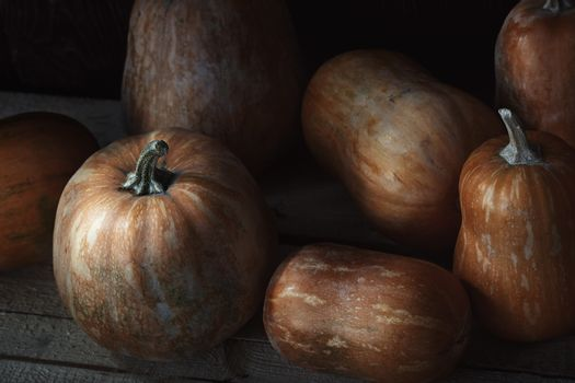 Group of pumpkins on a wooden table. High angle view