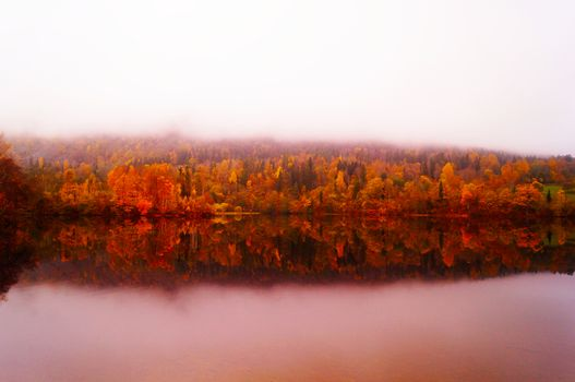 Autumn in Norway in a foggy day