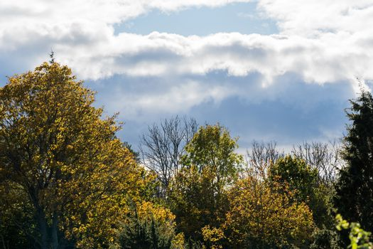 Fall season with dark clouds