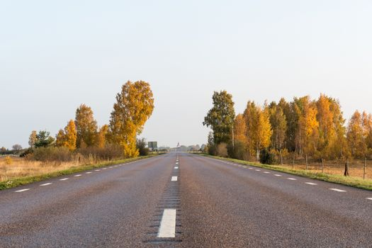 Sparkling fall colors by roadside