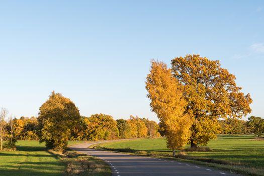 Winding road in a rural landscape by fall season