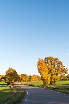 Beautiful country road by fall season