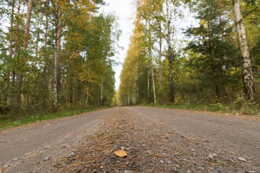 Low angle image of a gravel road