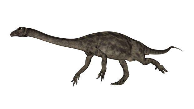 Anchisaurus dinosaur -3D render