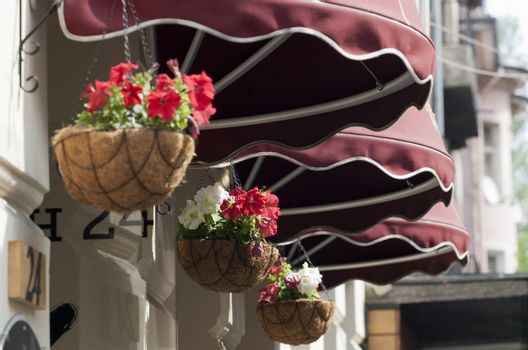 Awning and flowers