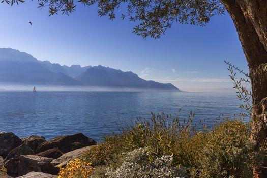 Alps mountains upon Geneva lake by beautiful day, Montreux, Switzerland.