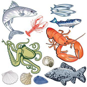 Seafood, fish, mussels illustration