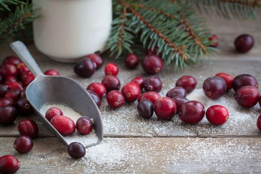Christmas fresh cranberries in sugar new year russian tradition