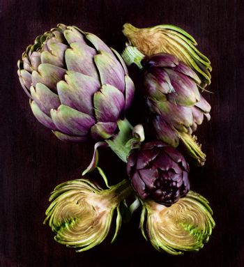 Arrangement of Perfect Raw Artichokes Full Body and Halves closeup on Dark Wooden background