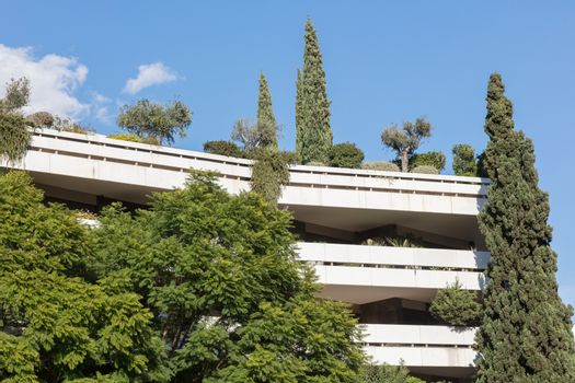 Block of flats in Athens - Trees and plants