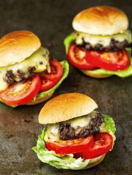 rustic american slider sandwich mini hamburger