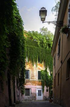View of street inTrastevere