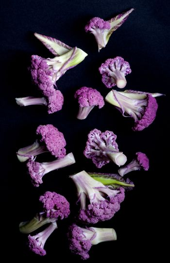 Arrangement of Fresh Raw Purple Sprouts of Cauliflower with Leafs isolated on Black background. Top View