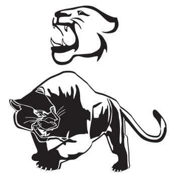 Leopard, panther graphic, illustration